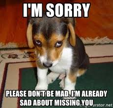 Dont Be Mad Meme - i m sorry please don t be mad i m already sad about missing you