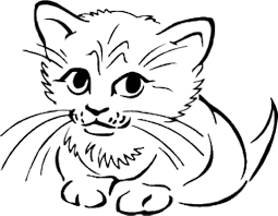 realistic cat clipart china cps