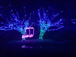 Potter Park Zoo Lights by L A Story Must Do With The Kids La Zoo Lights Giveaway
