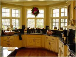 Kitchen Cabinet Shops 100 Kitchen Cabinet Shops L Shaped Two Toned Cabinets In