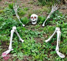 Life Size Halloween Skeleton by Glam Up Your Halloween D Cor With A Gold 5 Ft Skeleton Hang Him