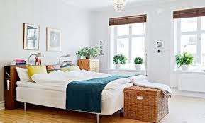Plants For Bedroom Would You Like To Sleep Better And Breath In Your Home Better 6