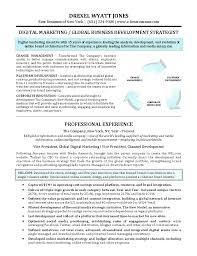 digital marketing resume marketing resume summary megakravmaga