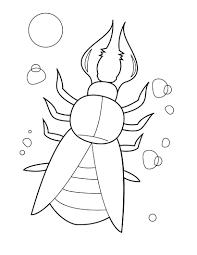 impressive insects coloring pages inspiring co 7499 unknown