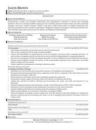 Tax Accountant Resume Sample by Auditing Resume Examples Resume Professional Writers