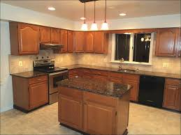 image of unique middle class family modern kitchen cabinets home