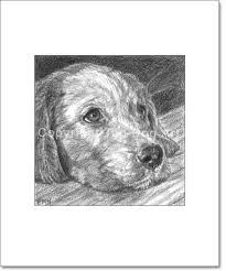 top dog art golden retriever art