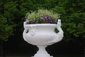Flowers Decor Free Photo Pot Flowers Decoration Decor Free Image On
