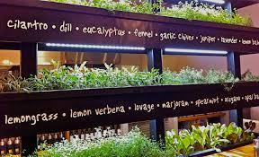 indoor herb garden wall vertical herb garden insteading