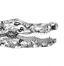 crocodile kelsey montague art