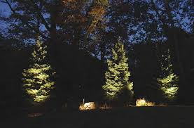 Landscape Lighting Trees Understanding How To Uplight Trees In Your Landscape