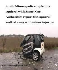 Car Accident Meme - smart car duck duck gray duck