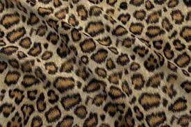 leopard fabric leopard printed fabric etosha leopard by willowlanetextiles