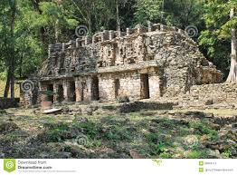 Mayan Ruins Mexico Map by Ancient Mayan Stone Ruins At Yaxchilan Chiapas Mexico Royalty