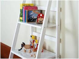 Ladder Shelving Unit Countryside Atmosphere With Rustic Ladder Shelf Design U2013 Modern