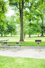 Fitted Picnic Tablecloth 8 Tablecloths To Dress Up A Public Picnic Table Kitchn