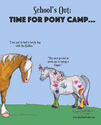 How To Tell If A Horse Is Blind Best 25 Horse Camp Ideas On Pinterest Horse Crafts Western