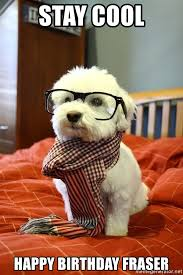 Stay Cool Meme - stay cool happy birthday fraser hipster dog meme generator
