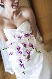 wedding flowers orchids kuvahaun tulos haulle wedding bouquets orchids viehe