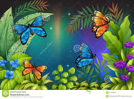 butterflies in the garden royalty free stock images image 31676029