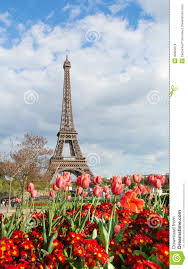 eiffel tower with beautiful tulips royalty free stock photos
