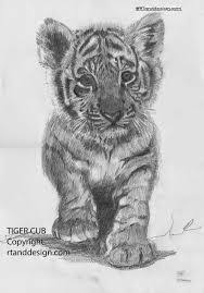 image result for tiger cub tattoo designs tattoo ideas