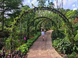 Botanical Gardens In Singapore by How To Spend 4 Days In Singapore Travel Matters
