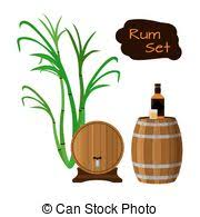 glass and bottle of rum with sugar cane vintage vector clipart