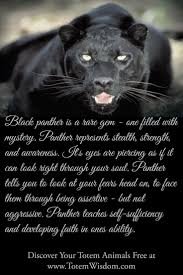 best 25 black panthers powers ideas on pinterest black panther