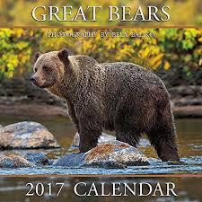 australian shepherd 2016 calendar australian shepherds 2016 wall calendar 12x12