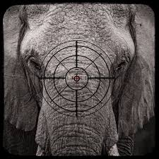 elephant country turns into killing fields asia times