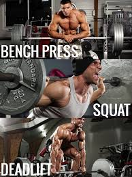 Bench Squat Deadlift Workout 35 Best Powerlifting Images On Pinterest Powerlifting Crossfit