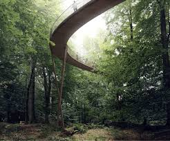 the treetop experience by effekt theinspiration com