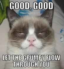 Grumpy Cat Monday Meme - 57141 grumpy cat darth vader meme g p5c0
