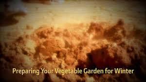 preparing your vegetable garden for winter hd youtube