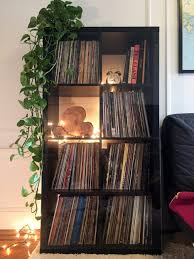 how to pet proof your record collection u2014 vinyl me please