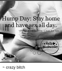 Hump Day Meme - hump day stay home and have sex all day stop eucking sidringlm hit