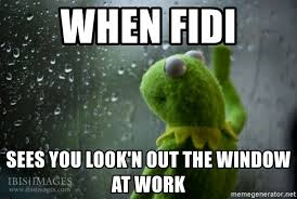 Rainy Day Meme - when fidi sees you look n out the window at work kermit rainy