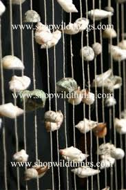 Sea Shell Curtains This Seashell Door Curtain Has Hundreds Of Real Shells On 12