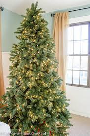 modern decoration balsam hills christmas tree fir trees hill