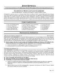 Best Resume Format For Vice President by Help Tip