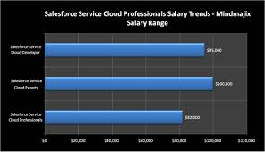 salesforce service cloud training with job assistance 2017