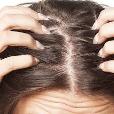 Hair Loss Cure For Women Hair Restoration For Women Dr Torgerson
