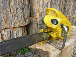 vintage chainsaw collection mcculloch 3 25 later model