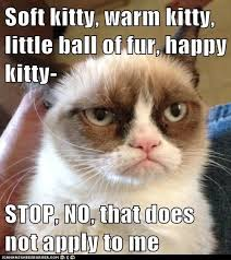 Sleepy Kitty Meme - simple sömntuta kattor 1 pinterest wallpaper site wallpaper site