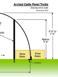 how to build an archway trellis use cattle panels to build an arched trellis u0026 hoop house dave u0027s