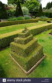 English Box Topiary - topiary and box hedges in an english garden in somerset uk stock