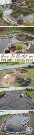 best 25 garden ponds ideas on pinterest ponds pond ideas and