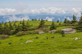 Appalachian Trail Map Virginia by Meanderthals Appalachian Trail On Grassy Ridge Roan Highlands