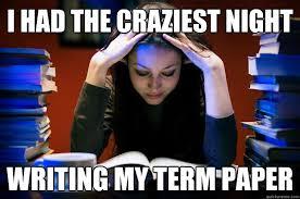 Essay Memes - essay writing meme